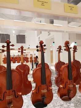 violino at Triennale 1